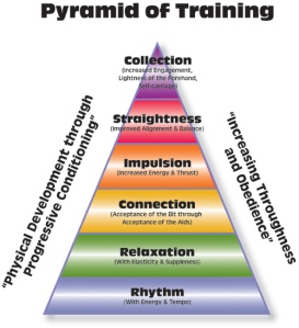 Pyramid_of_training